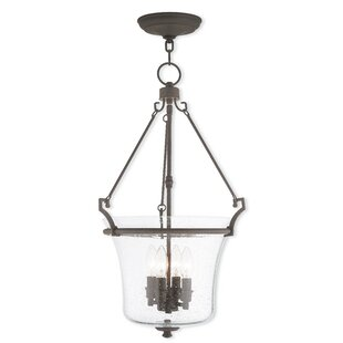 Richard 4-Light Urn Pendant by Darby Home Co