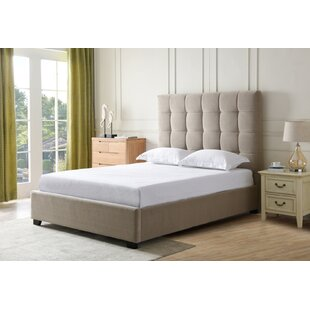 Neal Upholstered Panel Bed