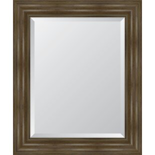 Melissa Van Hise English Resin Frame Wall Mirror