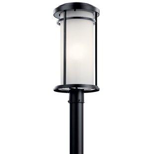 Scot Outdoor 1-Light Lantern Head by Ivy Bronx