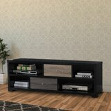 Hogan TV Stand for TVs up to 70 by Wrought Studio™