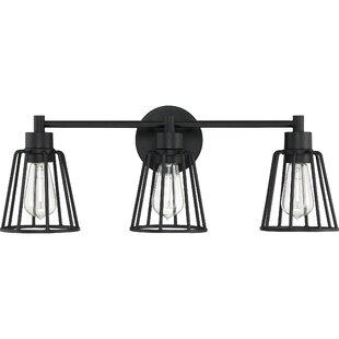 Williston Forge Clegg 3-Light Vanity Light