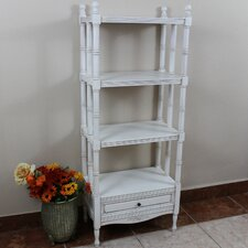 Wilder 55 Accent Shelves Bookcase by World Menagerie