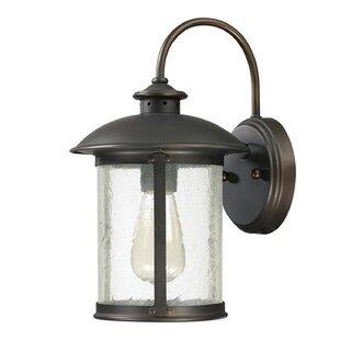 Gracie Oaks Calvin 1-Light 100W Outdoor Wall Lantern