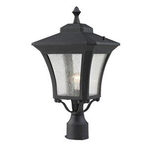 Digennaro Outdoor 1-Light Lantern Head by Charlton Home
