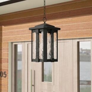 Vitela 1-Light Outdoor Hanging Lantern