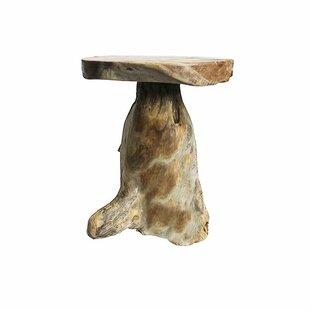 Union Rustic Luna End Table