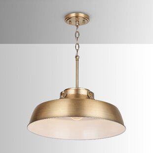 Oma 1-Light Dome Pendant by Wrought Studio