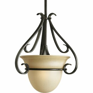 Lilly 1-Light Urn Pendant by Fleur De Lis Living