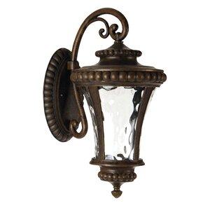 Essie 1-Light Outdoor Wall Lantern
