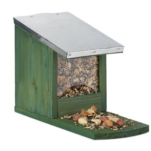 Hanning Squirrel Feeder By Sol 72 Outdoor