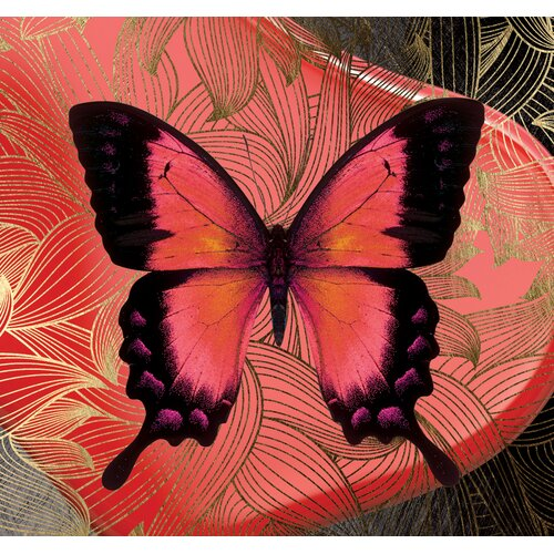 Carlyle Fine Art Metamorphosis Kindred Graphic Art Print Wayfair