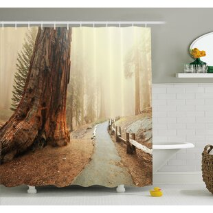 Forest with Giant Tree Body in the Foggy Forest Yosemite Mist Woodland Shower Curtain Set