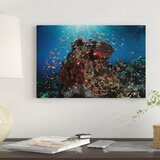 reef-fish-swimming-above-a-coral-reef-photographic-print-canvas
