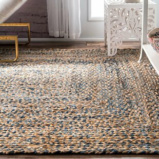 Destrie Hand Braided Blue Area Rug
