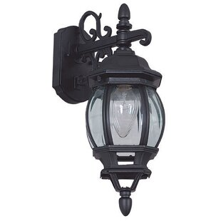 Best French 1-Light Outdoor Wall Lantern By Sunset Lighting
