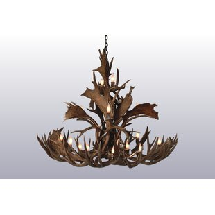Foundry Select Boyster 14-Light Candle-Style Chandelier