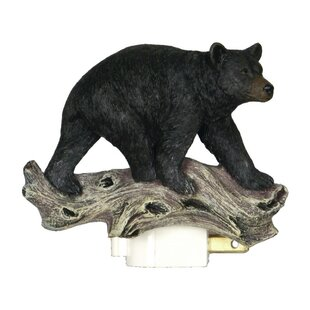 American Expedition Bear 3D Night Light
