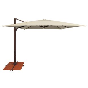Windell 10' Square Cantilever Umbrella by Darby Home Co