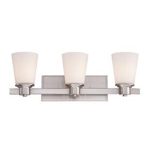 Ebern Designs McFetridge 3-Light Vanity Light