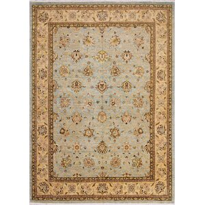 Leann Hand-Knotted Light Blue Indoor Area Rug