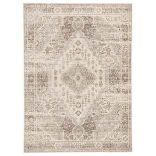 Vallejo Medallion Tan/Gray Indoor/Outdoor Area Rug