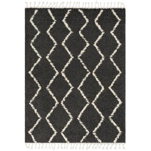 Best Reviews Carillo Hand-Woven Gray/White Area Rug By Union Rustic