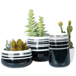 Contrast Ceramic Plant Pot By Present Time