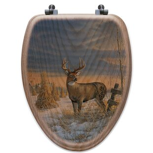 WGI-GALLERY Whitetail Deer in Winter Oak ..