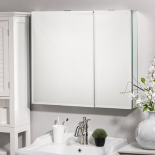 Nowell Recessed or Surface Mount Frameless 2 Door Medicine Cabinet with 4 Adjustable Shelves