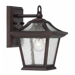Winston Porter Vanleer 1-Light Outdoor Wall Lantern