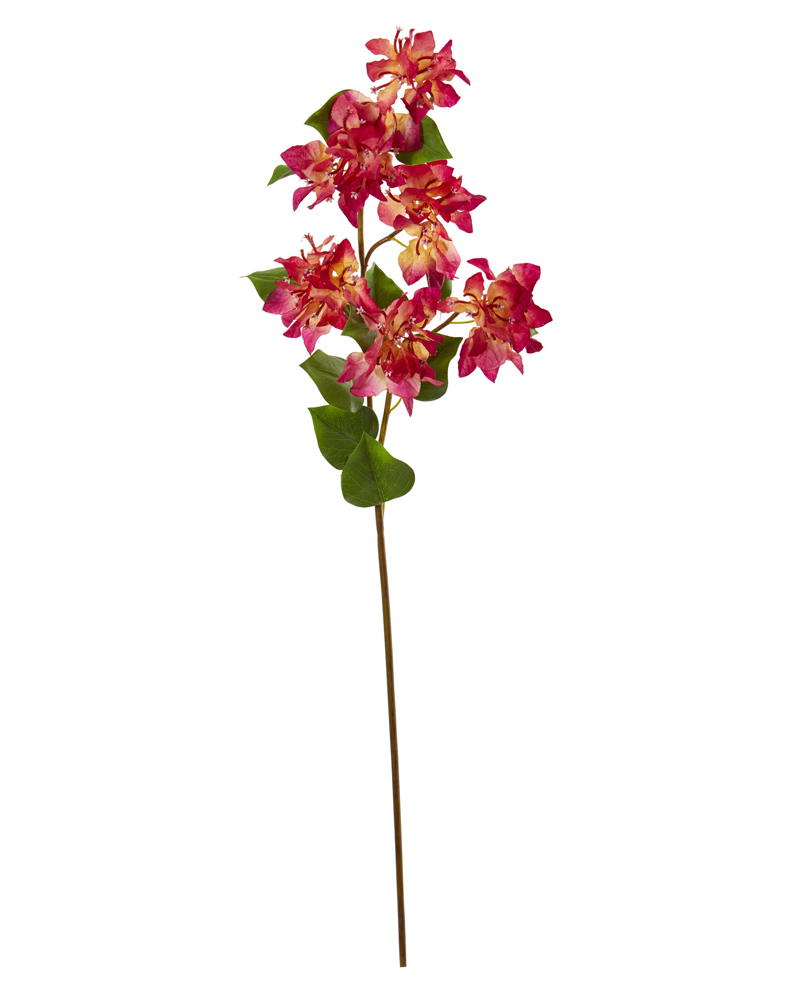 Bay Isle Home Artificial Bougainvilleas Stems Wayfair