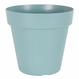 Blanche Plastic Pot By Freeport Park