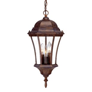 Alcott Hill Francesca Lane 3-Light Outdoor Hanging Lantern