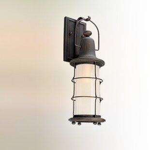 Longshore Tides Farrell 1-Light Outdoor Wall Lantern