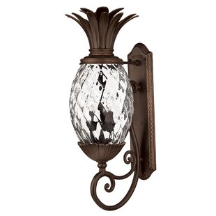 Best Choices Terry 3-Light Outdoor Wall Lantern By Beachcrest Home
