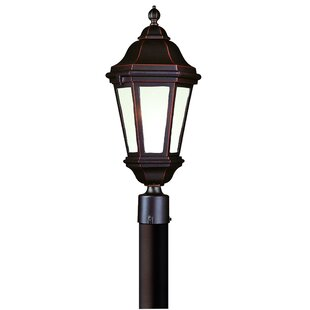 Theodore Traditional Lantern Head by Darby Home Co