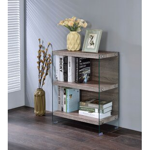Evered Spacious Standard Bookcase by Ivy Bronx