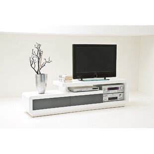 Ashlie TV Stand For TVs Up To 65