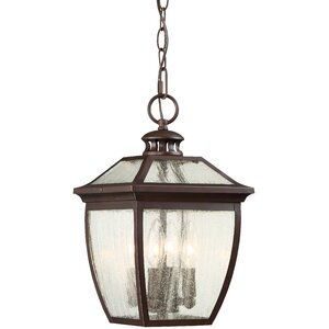 Auer 4-Light Outdoor Hanging Lantern