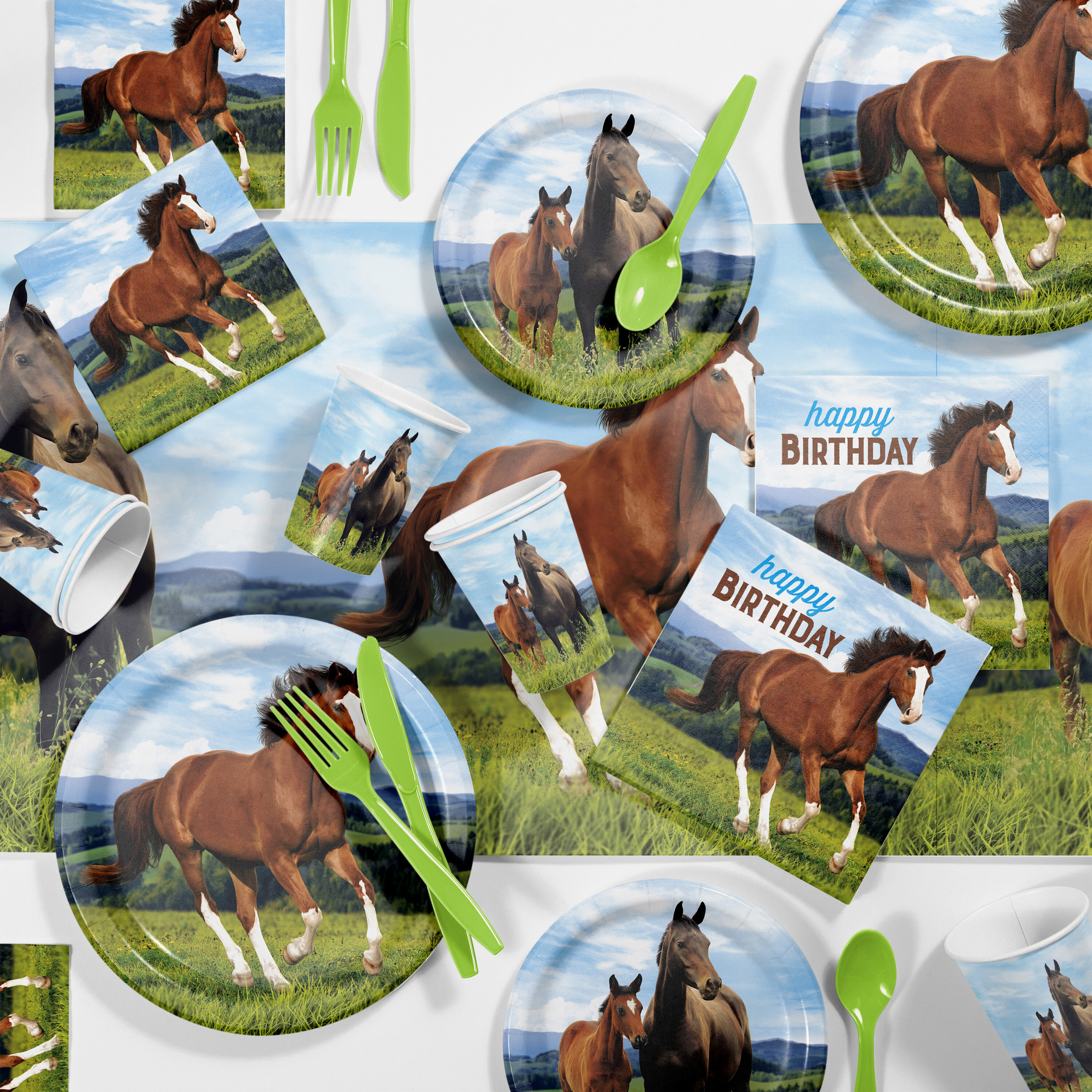 Creative Converting Wild Horse Birthday Party Supplies Kit Guests ...
