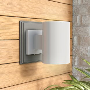 Terry 1-Light Outdoor Sconce