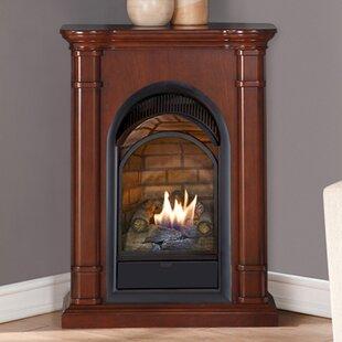 Small Gas Corner Fireplace Wayfair