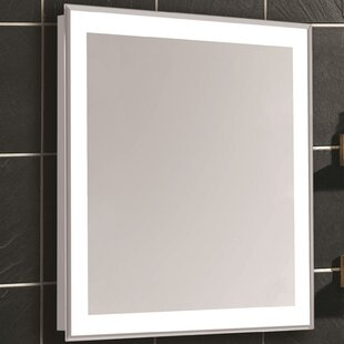 Searching for Edge Bathroom/Vanity Mirror By Latitude Run