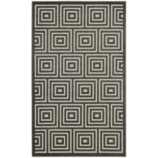 Candor Indoor/Outdoor Area Rug
