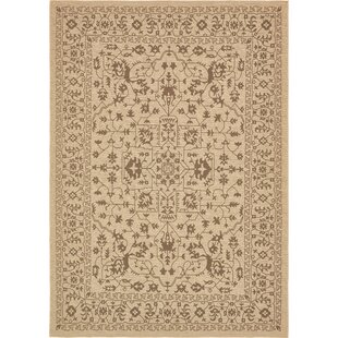 Bear Beige Indoor/Outdoor Area Rug