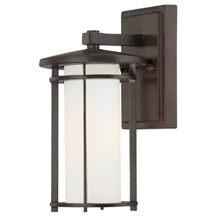 Read Reviews Bradshaw 1-Light Outdoor Wall Lantern By World Menagerie