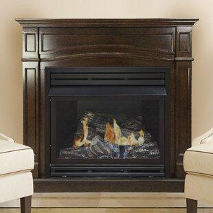 Vented Propane Fireplace Wayfair