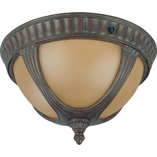 Broadnax 2-Light Outdoor Flush Mount by Fleur De Lis Living No Copoun