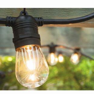 Hi-Line Gift Ltd. Vintage Commercial Patio String Lights with 12 Edison Light Bulbs